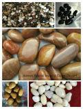 pietra &Pebble del ciottolo naturale su Polished Mixed di colore di 3-5cm