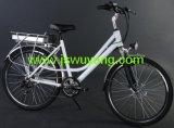 Elektrisches Fahrrad (JSEB-008)