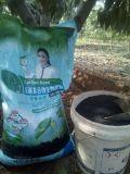 Fertilizzante organico multifunzionale di Biochar con il prezzo basso