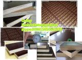 La película del pegamento de la fábrica WBP de Shandong hizo frente al material de construcción de la madera contrachapada