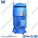 Вертикальный асинхронный двигатель Пол-Вала для вертикального насоса турбины (IP23/IP54/IP55)