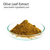 100% Natural Oleuropein estándar de la UE Extracto de la hoja de oliva