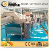 Tomate-aufbereitende Zeile