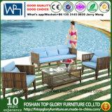 Современные искусственные плетеной мебели в Саду диван (TG-017)