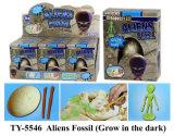 Jouet drôle neuf de fossile d'Anumals