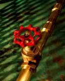 Alta qualidade, Válvula de Gaveta de latão com material de latão (EM-V-B209)