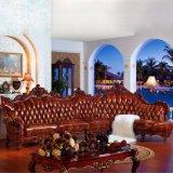 Sofas de salle de séjour réglés pour les meubles à la maison (806)