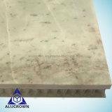 Decorazione marina con i comitati di marmo di memoria di favo della pietra del granito