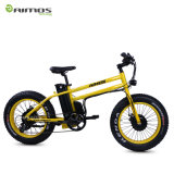 48V 14.5ahの緑都市電気自転車