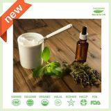 Natürlicher Stevia-Sirup (nullkalorie)
