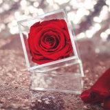 [أم] حفظ بلاستيك شفّاف شفّافة مصغّرة ورود يعبّئ هبة أكريليكيّ زهرات صندوق