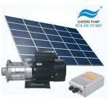 Jintai Solar Surfaces Toilets Face lift Pumps Price Irrigation Pump Toilets