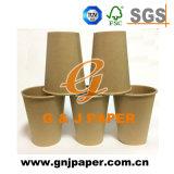 tazza calda di carta doppia a gettare del tè 22oz/caffè