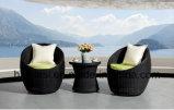 /Rattan al aire libre/silla y vector de la rota de los muebles del jardín/del patio fijó (HS 1013C-2 &HS1013ET-2)
