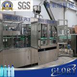 16000-18000bhp Auotmatic 음료 물 채우는 패킹 부는 레테르를 붙이는 기계장치