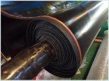 Certificato di PAHs per lo strato di gomma/stuoia/stuoia/pavimentazione di SBR+EPDM+Nitrile+Neoprene+Vition
