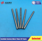 Produzieren des Tungten Karbids Rod in der Zhuzhou Fabrik
