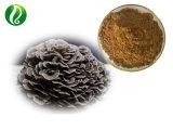 Высокое качество Maitake грибной порошок / грибы Maitake извлечения порошок / Grifola Frondosa порошок