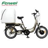 前部モーター(FR-TDN03Z)を搭載する安い貨物電気バイク