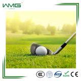 ゴルフフィールドのためのカーペット草の価格