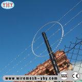 建物のための2mm電流を通されたPVCによって塗られるトゲワイヤーは保護する