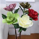 Fleurs en soie de soie blanche Magnolia Magnolia Leaf gerbe de fleurs en soie de soie artificielle Magnolia Fleurs pour la vente