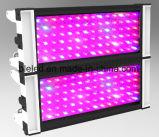 La planta de luz LED crecer