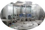 Automatische RO die de Apparatuur van de Behandeling Purifierwater met de Volledige Lopende band van het Pakket van de Etikettering van het Flessenvullen van het Huisdier Verpakkende Bottelende Drinken