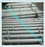 Système galvanisé durable d'échafaudage pour la construction