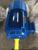 Ie2 (CE) ISO9001 Série Y trois phase moteur électrique (Y180L-4)