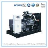 Grande generatore elettrico di promozione 100kw Ricardo da vendere