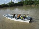 Barcos da excursão do passageiro dos barcos 70-90HP da fibra de vidro da casca de Liya V para a venda