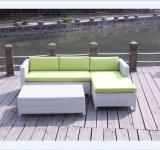 Muebles de mimbre del patio del sofá de Ratan