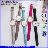 Reloj clásico de las señoras de la manera del cuarzo del ODM (Wy-082D)