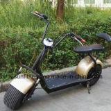 Vespa eléctrica de Halei Har Ley de la rueda grande de la vespa del deporte de Usun