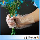 PE/jetables CPE/TPE de gants de plastique ou de gants pour la main de classe alimentaire
