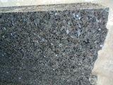 Mattonelle blu popolari del granito della perla per la pavimentazione e la parete