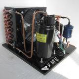 Unidad de condensación del compresor refrigerado de Purswave 1/2HP 5/9HP Qx110hjz para el mini acondicionador de aire y deshumidificador 220V/50Hz R134A