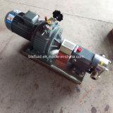 Bls Edelstahl-Öl-Pumpen-Stahlgetriebe-Öl-Zahnradpumpe