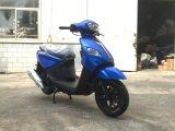50cc/100cc/125cc/150cc EEC YAMAHA 엔진 매트 가스 모터 스쿠터 기관자전차 (SL100T-A2)