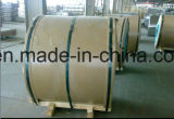 Bobina terminada moinho quente/da laminação liga de alumínio/de alumínio