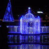 8*10m 1920 Licht van de LEIDENE het Netto Lichte LEIDENE Decoratie