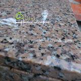Propietario de la Cantera China G458 baldosa de granito rosado de la pared de revestimiento revestimiento Revestimiento de suelos
