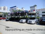 公共のホームガレージ車の駐車上昇2のポストのタイプ。 単一か二重または三重