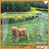 O elo da corrente galvanizado Dog Executar Cão Canis