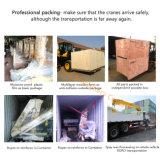 Gru montata camion dell'asta dell'articolazione da 10 tonnellate