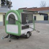 普及した電気3つの車輪のオートバイの通りの三輪車の食糧トレーラー