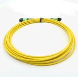 MPO-MPO Singlemode 12cores Fiber Optical Patchcord