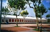 De grote Tent van de Markttent van de Gebeurtenis van het Huwelijk van de Partij voor 1000 500 300 200 100 Seater