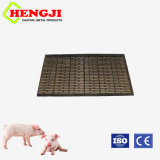 공장 가격 돼지 농장 지면